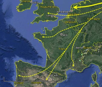 Carte migration bécasse